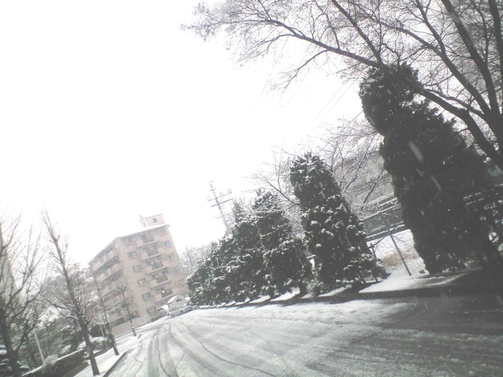 Photo344